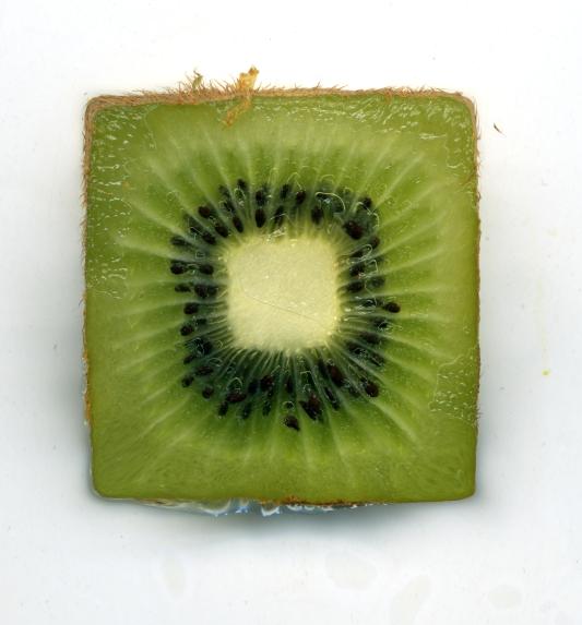 Kiwi Carré