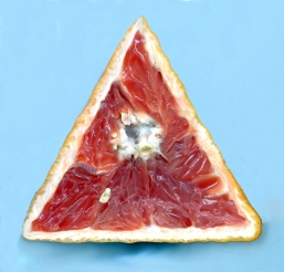 Pamplemousse Triangle